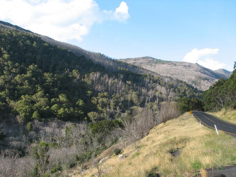 La campagne des Snowy Mountains