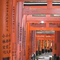 sanctuaire_fushimi_inari16