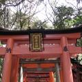 sanctuaire_fushimi_inari7