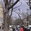 avenue des gobelins - vue sur le Panthéon - avril 06