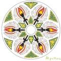 Mandala 2.23