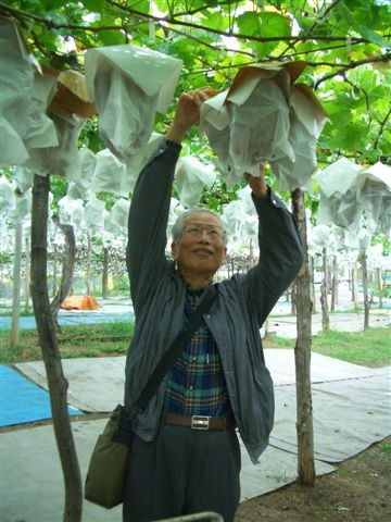L'oncle Tsai