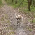 montech_mars2003_15