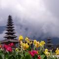 99 Octobre 2005: Bali à laToussaint: le pied!