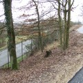 La piste surplombe la route départementale.