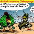 H5N1 et les affaires
