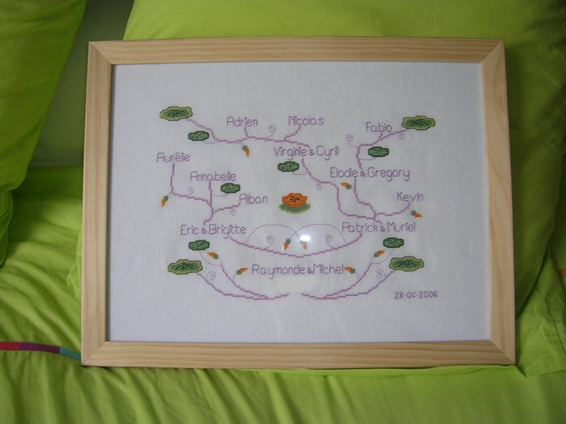 arbre_g_n_alogique_encadr__2