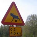 Panneau assez récurrent sur la route jusqu'à Öland