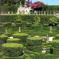 castelo_branco_gardens