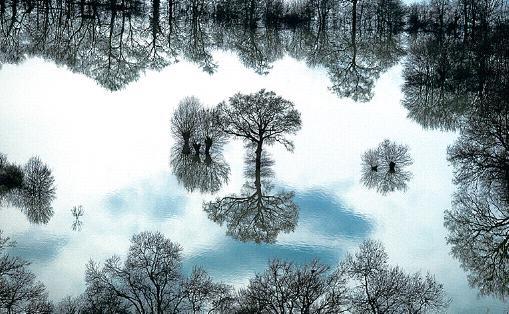 Un miroir merveilleux
