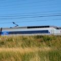 TGV Atlantique en pleine vitesse