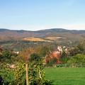 Village_vignes