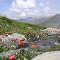 randonnée en Vanoise (refuge du Plan des Gouilles)