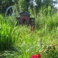 jardins et ruines