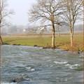 Rapides en Saône et Loire ?