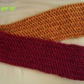 écharpe bicolore janvier 06