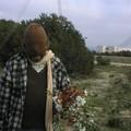 indigène de Formentera