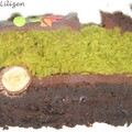 cake au th matcha et au chocolat