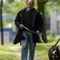 Avec ma chienne Taïga, en promenade dans le bois des éboulures