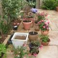 Chouette la belle saison arrive, alors on réinstalle la terrasse