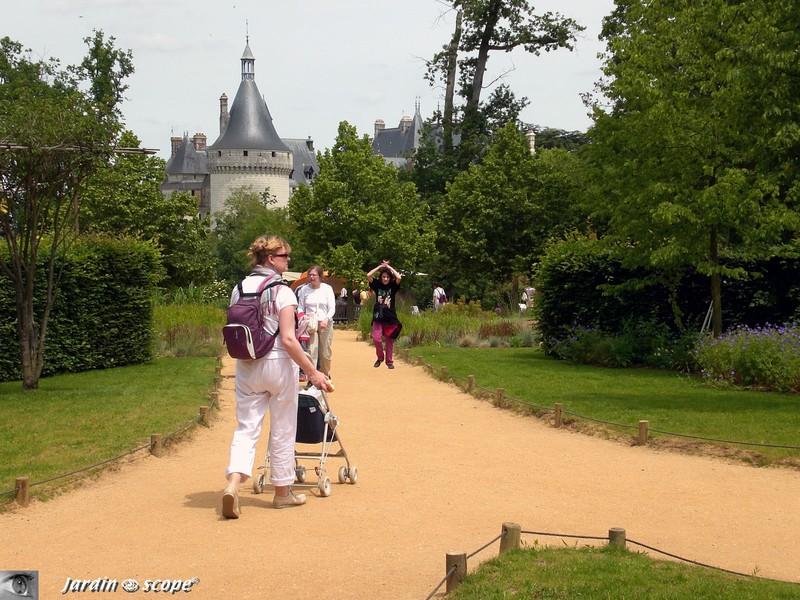 Décor enchanteur pour visites de jardins insolites