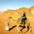 With my camel in the desert