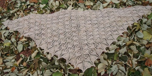 Flower Basket Shawl 2