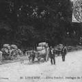 Libourne___All_es_Souchet_Attelages_de_Vignerons