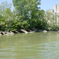 épaves sur la Saône à l'entrée du canal du centre