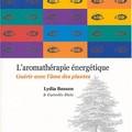 L_aromath_rapie__nerg_tique__gu_rir___l__me_des_plantes