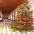 Un magnifique et gigantesque sapin tronant dans la galerie ! Cette salle de bal mesure 60 m de long et 6 de larg et est éclairée par 18 fenêtres, elle fût construite par Catherine de Médicis sur le pont de Diane de Poitiers