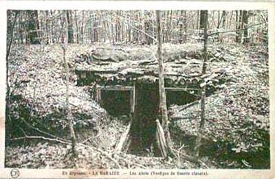 Abris en forêt d'Argonne