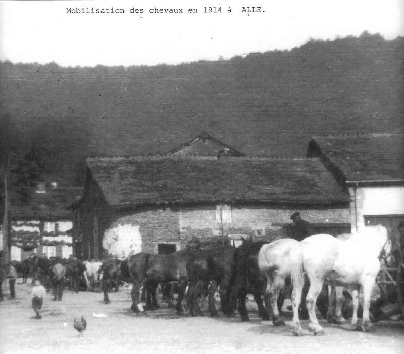 Mobilisation des chevaux (1914)