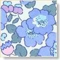 betsy bleu ciel, coloris classique