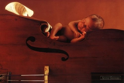 b b violon photo de anne geddes l 39 univers de katy. Black Bedroom Furniture Sets. Home Design Ideas
