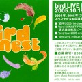 bird_birds_nest_jp_2005_13_jrp