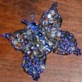 papillon bleu au flash