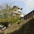 Kumamoto - La tour principale du Château se dessine dans le ciel...