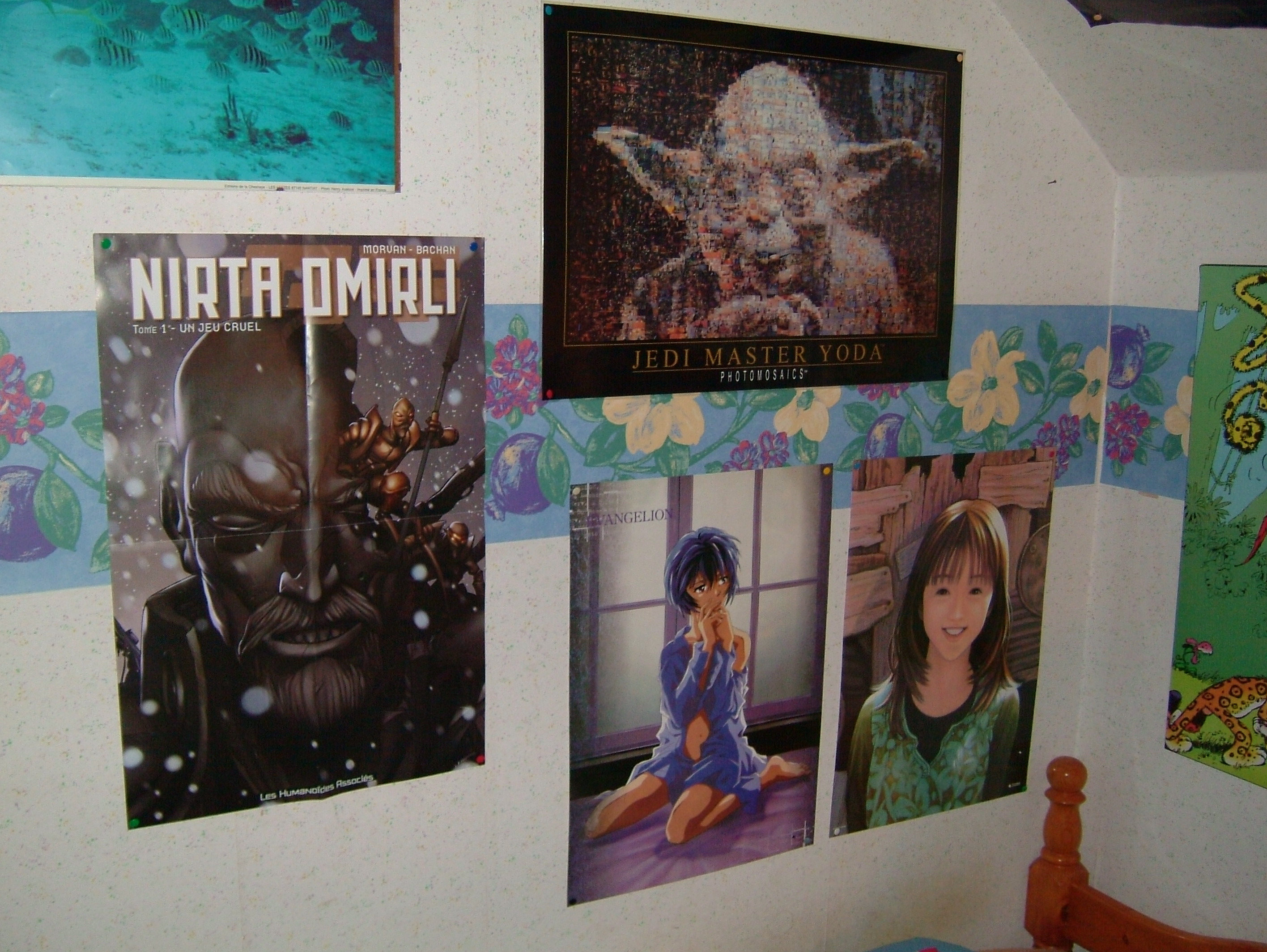 le mur poster de ma chambre saint vincent photo de