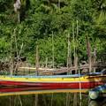 44 Barques à Roura