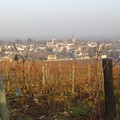 Bourgogne_2004_024