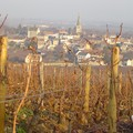 Bourgogne_2004_027