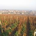 Bourgogne_2004_099
