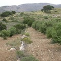 Cyclades_2004_033