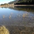 8. Le lac vient de geler