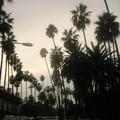 Los_Angeles__54_