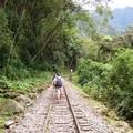 Inca_Trail_J3__29_