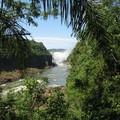 Iguacu_argentin__1_