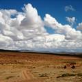 Altiplano_day_1__29_