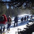 20060220 Raquettes au plateau de Beilles